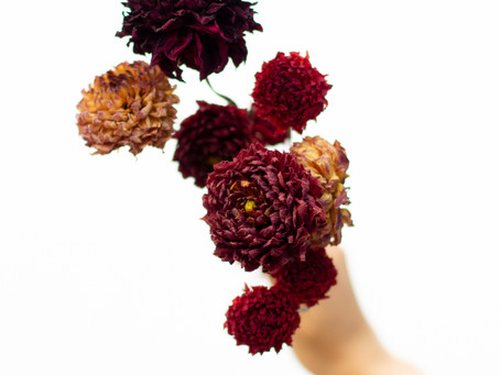 A Guide To Drying Your Local Flowers