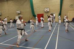 karate chesterfield karate_0568
