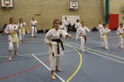 karate chesterfield karate_0586