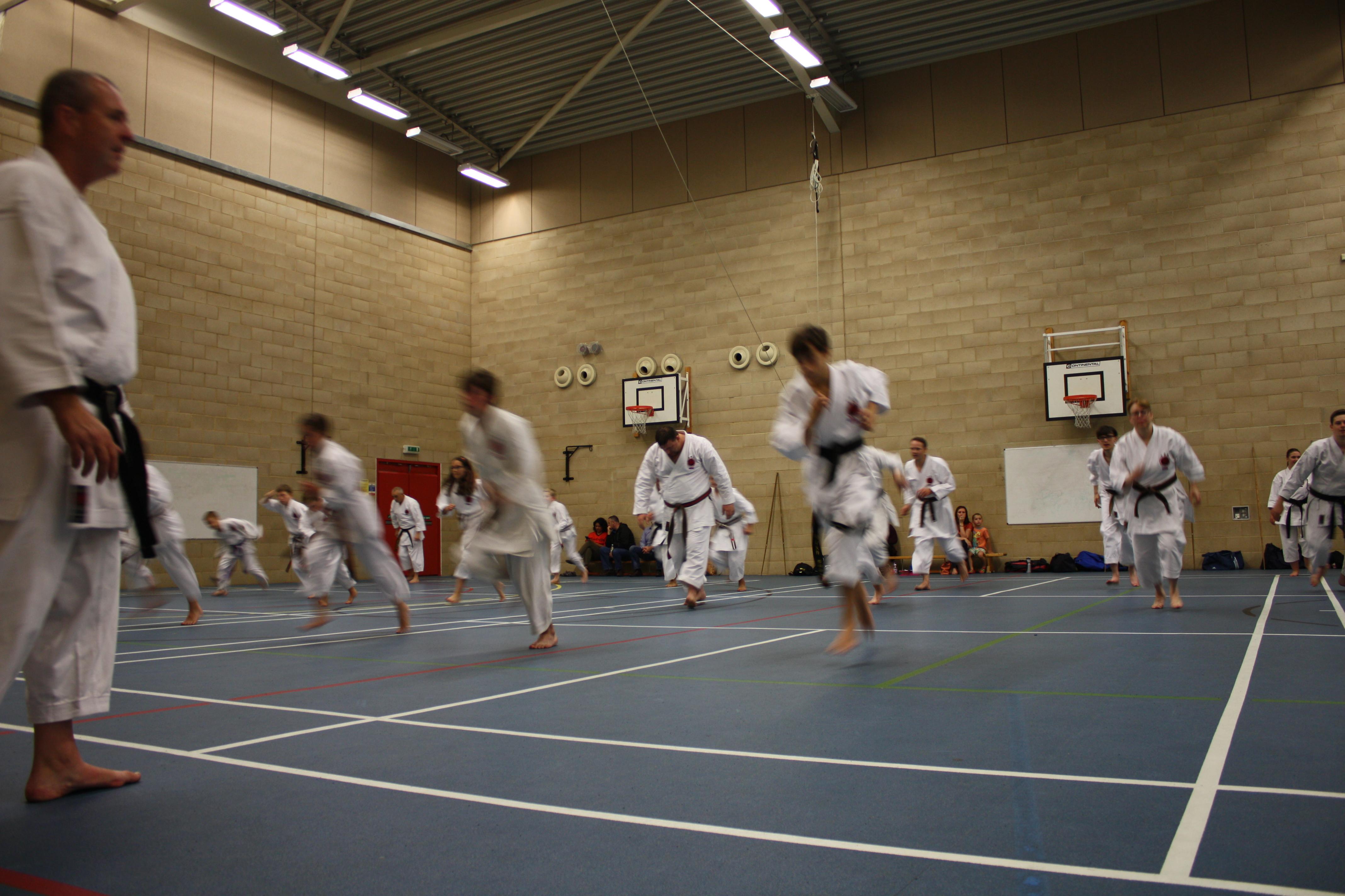Karate class action go go!