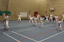 karate chesterfield karate_0581