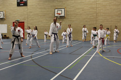 karate chesterfield karate_0575