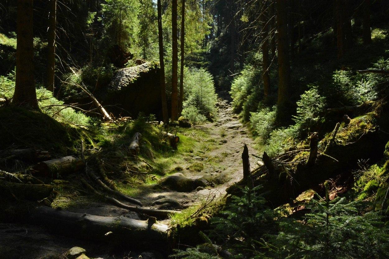 Kyjovské údolí