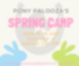 Spring Camp Flyer.png