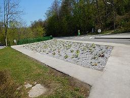 Marienkapelle Purkersdorf List Baum & Grüne