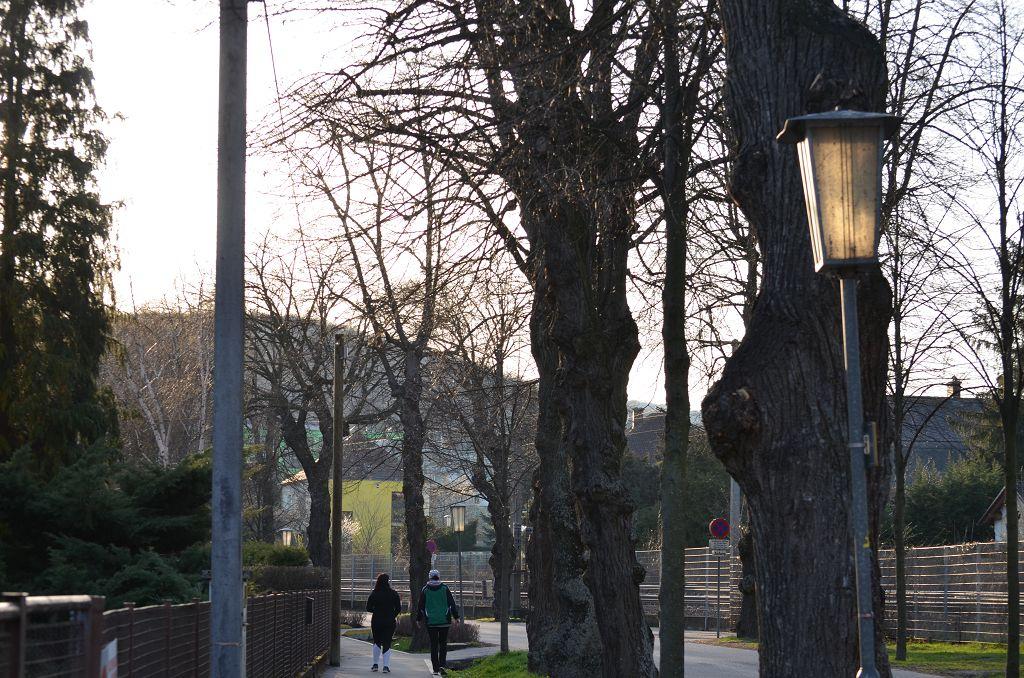 Lampe_Bahnhofstraße_(18)