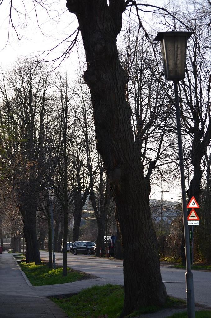 Lampe_Bahnhofstraße_(13)