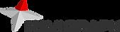 navigraph_logotype.png