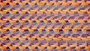 Remember Magic Eye Pictures? A Sensory Revival From The 1990's....