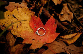 The Fall .. .the Crisp Air ...the LEAVES