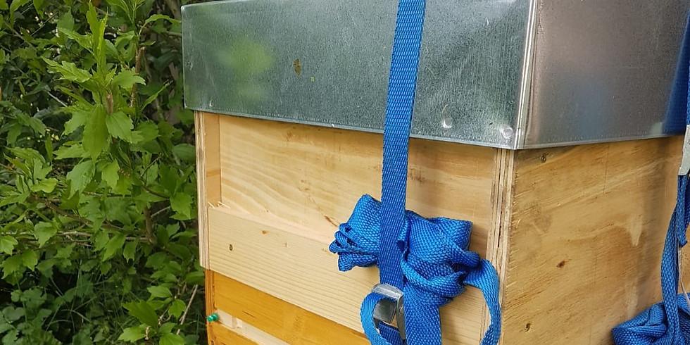 Wandern mit Bienen