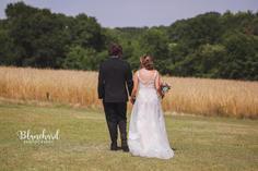 Wheat fields stroll