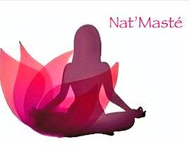 Logo_Nat'Masté.png