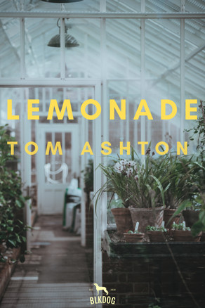 New Release: Lemonade by Tom Ashton - Audiobook Version
