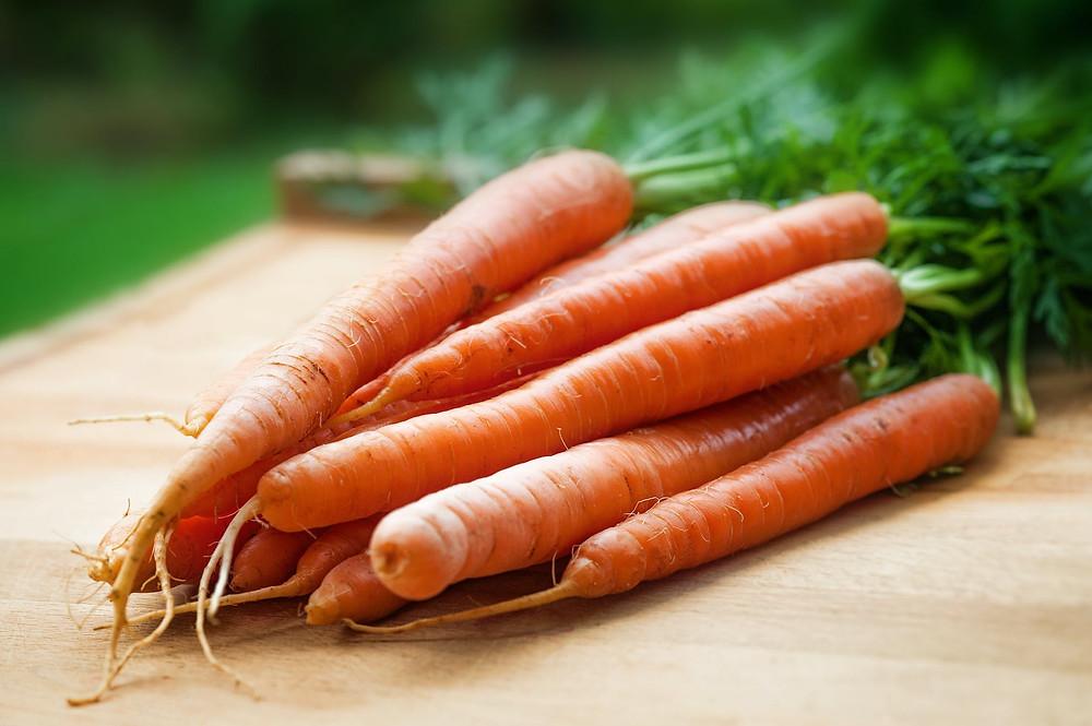 Karotten Möhren