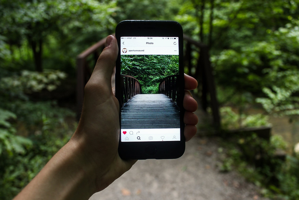 Smartphone Wald Foto