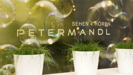 Optik Petermandl, Steyr