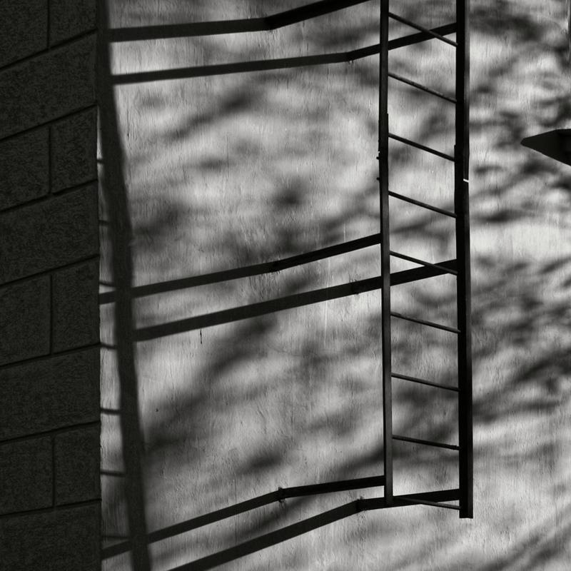 One Ladder