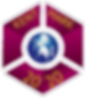 2020 badge transparent.png