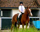 horse riding lessons timbertops private lessons sidcup