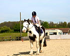 horse riding for disabled sidcup bexley