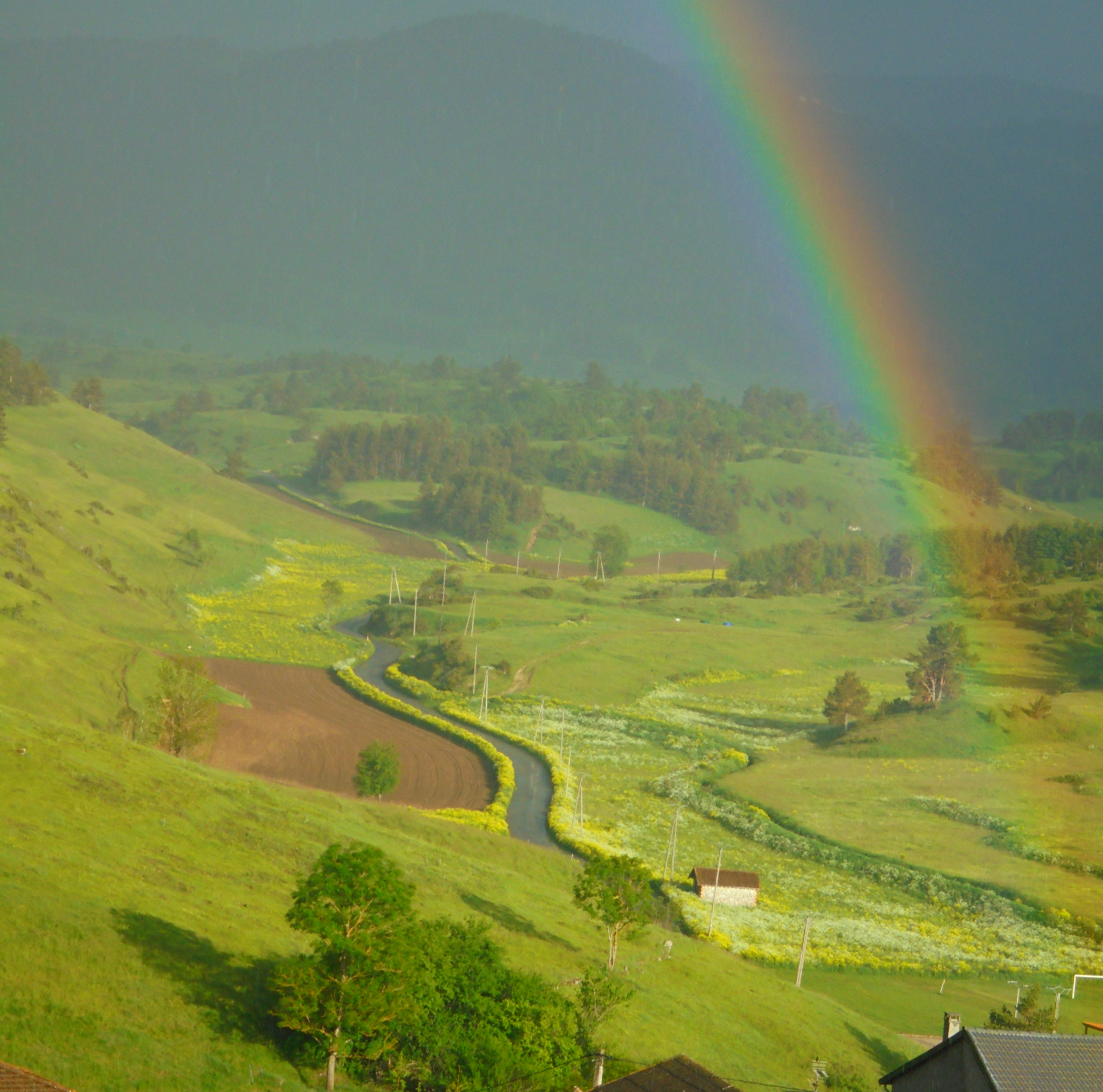 vue de Comus la route vers Camurac.JPG