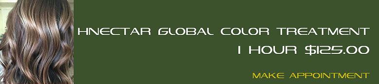 009 HNECTAR Global color treatment.jpg