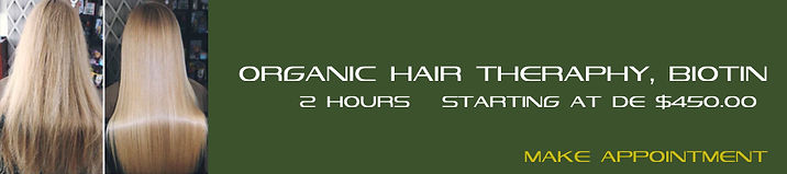 021 ORGANIC HAIR THERAPHY, BIOTIN.jpg