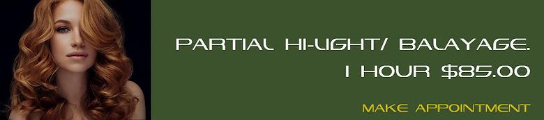 010 Partial hi-light - Balayage.jpg