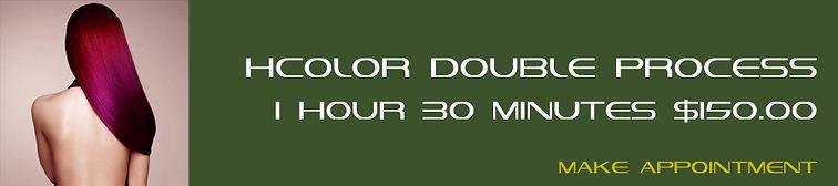0008 HCOLOR Double Process.jpg