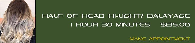 011 HALF OF HEAD HI LIGHT BALAYAGE.jpg