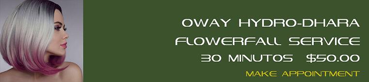 019 Oway Hydro-dhara Flowerfall Service.