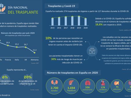 Infografía | Día Nacional del Trasplante