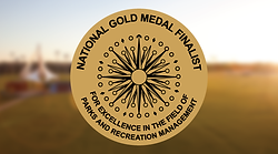 Gold-Medal648x360.png