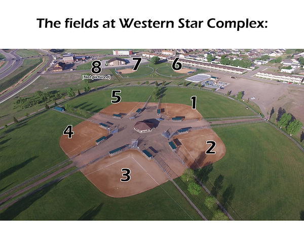 Western Star fields.jpg