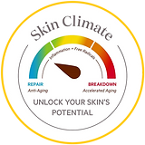 skin climate gele rand.png