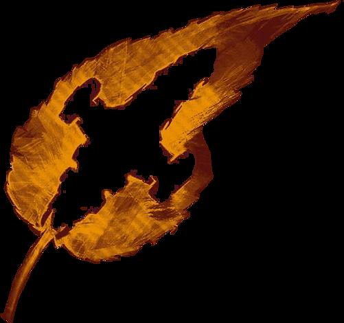Firefly Orange.png