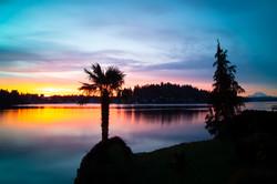 Meydenbauer Bay Sunrise