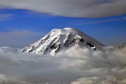 Shrouded Rainier