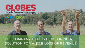 Globes covers Salicrop - The company that is providing a solution to a $12B loss of revenue