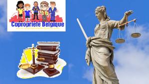 Annulation d'assemblée générale de copropriété en Belgique: conclusions judiciaires de synthèse