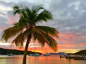 Palm Trees and Sailboats Sunset.JPG
