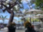Zozos_Dining_Area.jpg