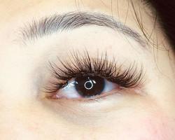 volume, wispy natural, eyelash extensions