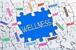 Wellness shutterstock_286774184