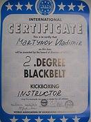Сертификат Мартынов Владимир - черный пояс 2 дан