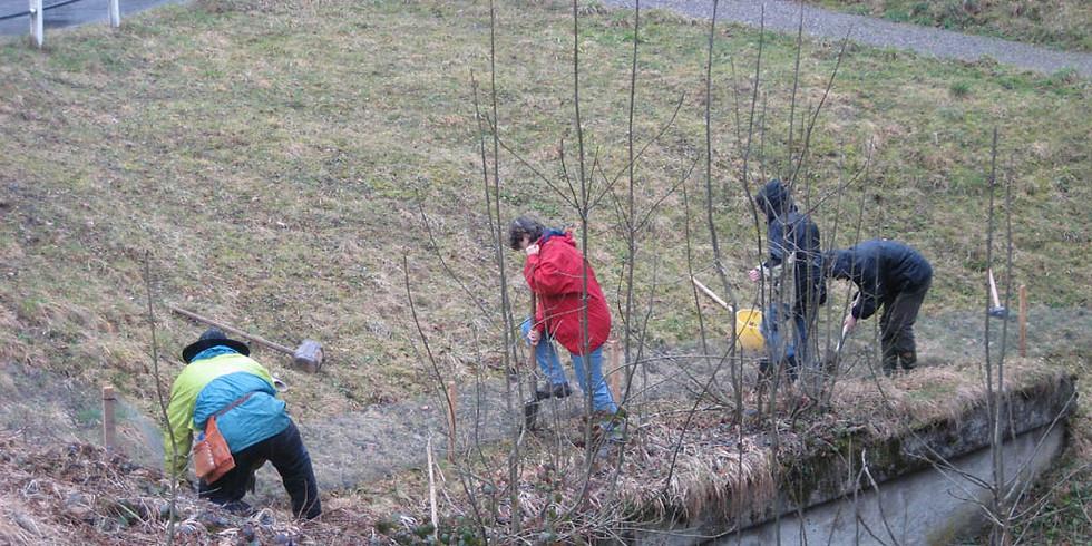 Naturschutz-Einsatz am Bachtelweiher