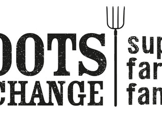 Boots Foor Change Project Wins 2017 Philanthropy Australia Award