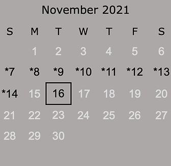 2021 November.png