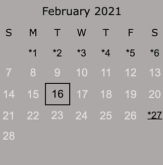 2021 February.png